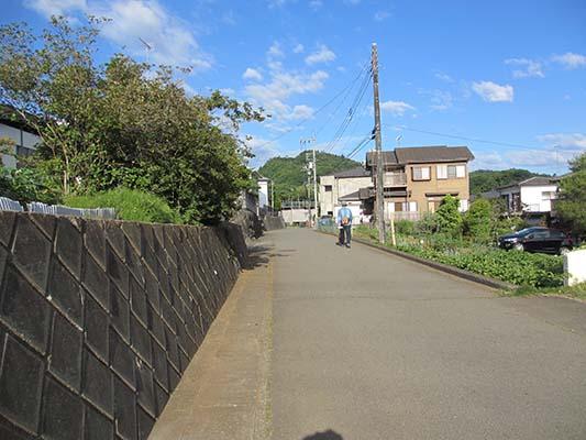 IMG_4882.jpg
