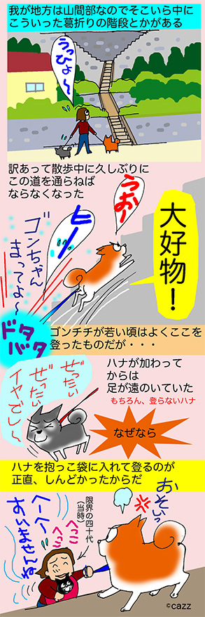 inumann-157.jpg