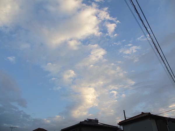 IMG_7579.jpg